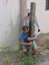 Removing Fence Posts 1